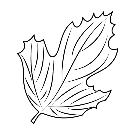 autumn leaf seasonal icon vector illustration design