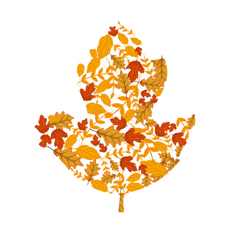 autumn leafs pattern seasonal icon vector illustration design