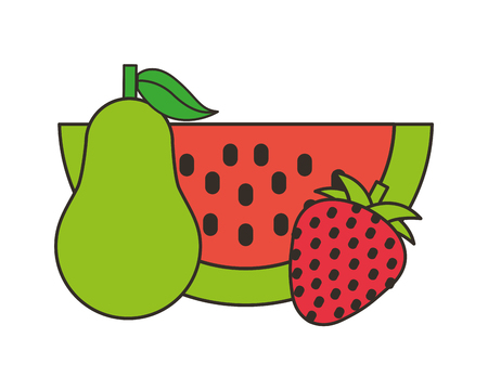 watermelon pear and strawberry fresh  vector illustration