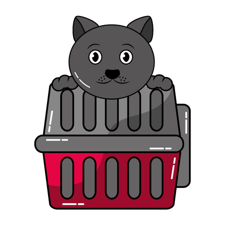 cute cat with transport box vector illustration
