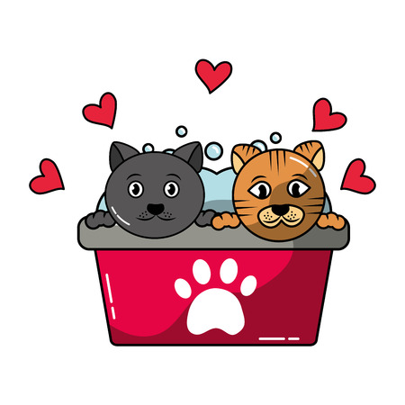 two cats in basin bath grooming pet vector illustration