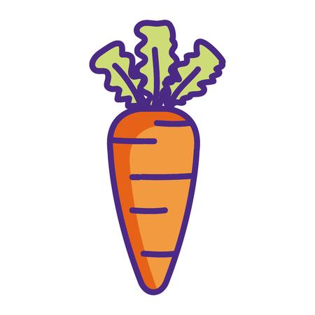 fresh carrot vegetable icon vector illustration design