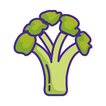 fresh broccoli vegetable icon vector illustration design