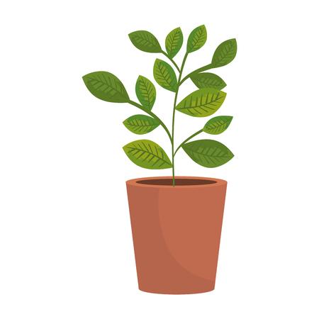 Zimmerpflanze im Topfikonenvektorillustrationsentwurf Vektorgrafik