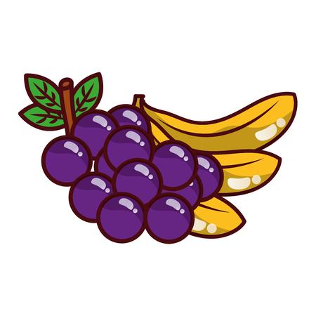 fruits fresh organic grapes and bananas vector illustration