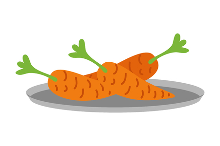 fresh organic carrots on dish vector illustration