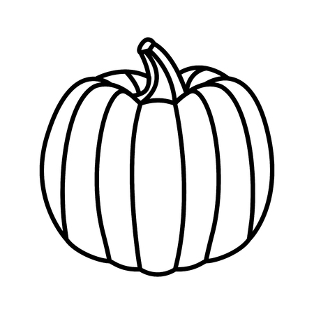 fresh pumpkin on white background vector illustration Çizim