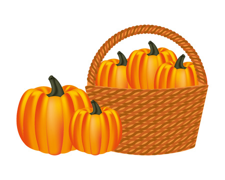 wicker basket filled pumpkin harvesting vector illustration