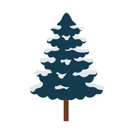 pine tree on white background vector illustration