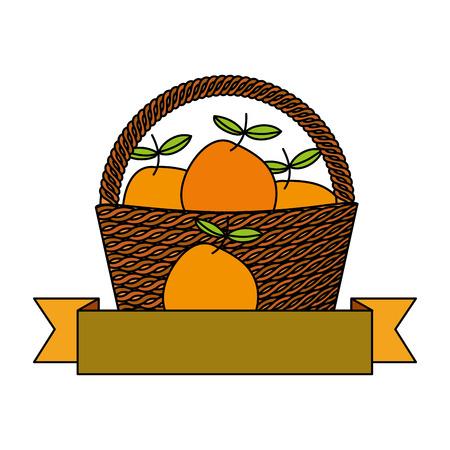 wicker basket orange fresh banner vector illustration