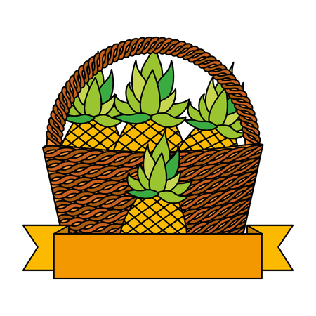 wicker basket pineapple fresh banner vector illustration