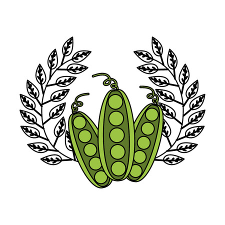 peas leaves fresh organic emblem vector illustration