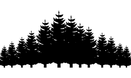 trees pine forest nature landscape background vector illustration