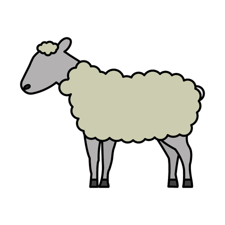 sheep cartoon animal wild life vector illustration Ilustração