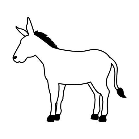 donkey cartoon animal wild life vector illustration Illustration