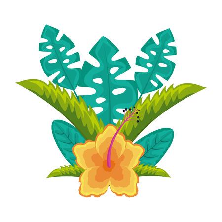 hibiscus flower leaves palm arrangement tropical vector illustration Illustration