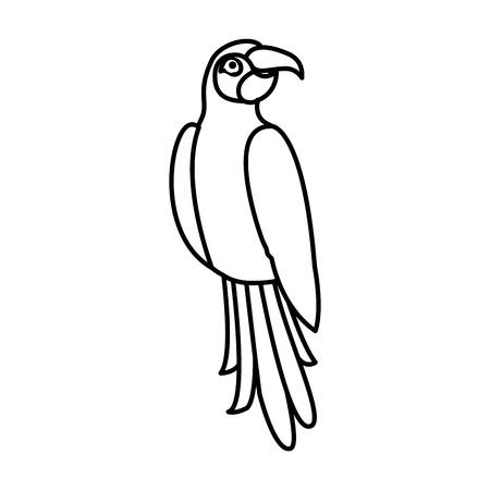 exotic parrot bird tropical vector illustration outline