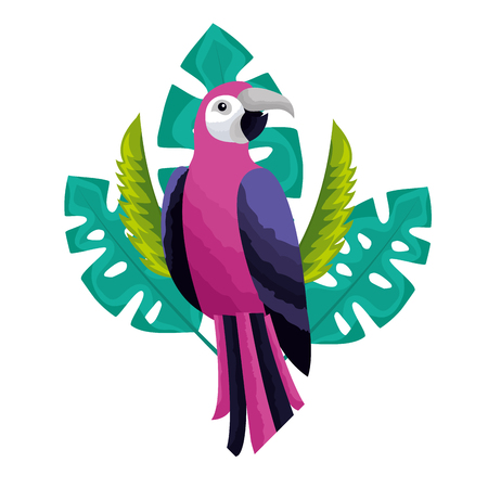 exotic parrot bird leaves tropical vector illustration Ilustração