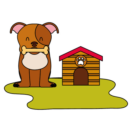 domestic dog with house and bone vector illustration Illustration