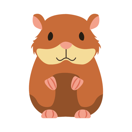 hamster rodent on white background vector illustration