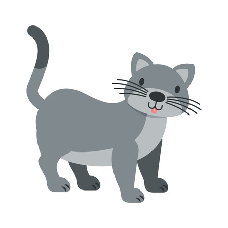 cat pet on white background vector illustration 向量圖像