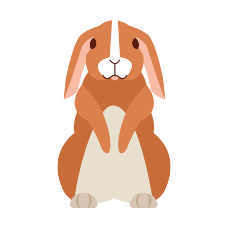 cute rabbit on white background vector illustration Reklamní fotografie - 127733014
