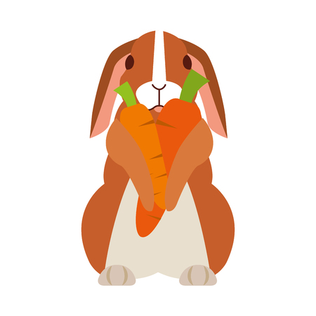 cute rabbit with carrots on white background vector illustration Stok Fotoğraf - 127733022