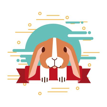 rabbit pet shop ribbon emblem vector illustration