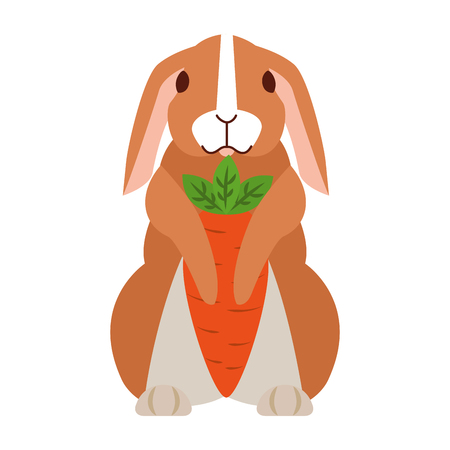 cute rabbit with carrots on white background vector illustration