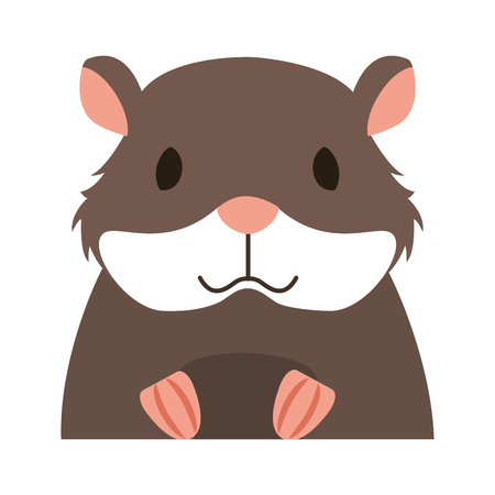 hamster rodent on white background vector illustration Stock Vector - 127733034