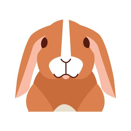 lindo conejo en la ilustración de vector de fondo blanco