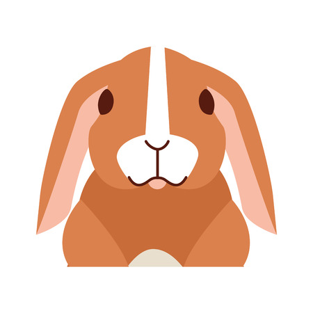 cute rabbit on white background vector illustration Illustration