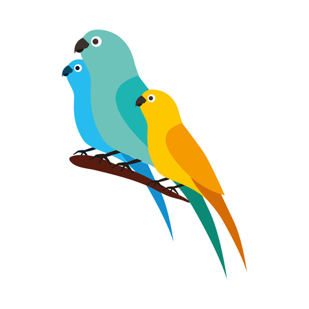 canary and parrots birds on branch vector illustration