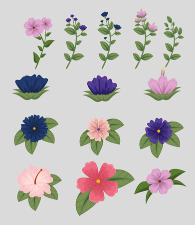 set flowers plants with leaves nature design vector illustration