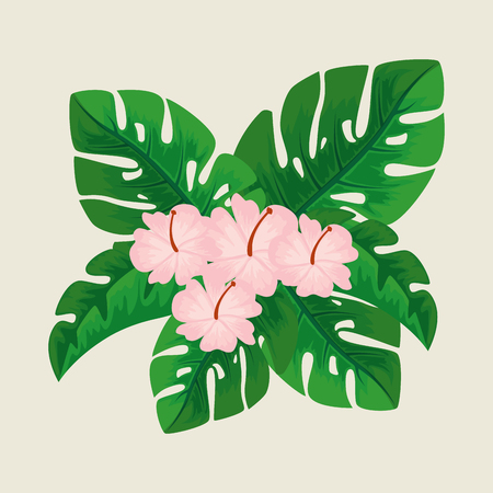 cute flowers with petals and natural leaves vector illustration
