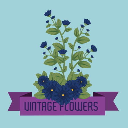 cute flowers plants with leaves and ribbon vector illustration