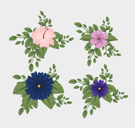 set flowers with petals and naturals leaves vector illustration
