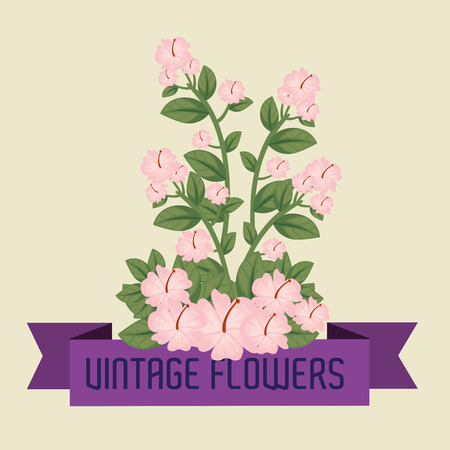 cute flowers plants with leaves and ribbon design vector illustration