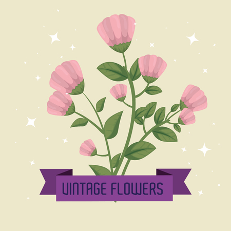 flowers plants with leaves and petals design vector illustration