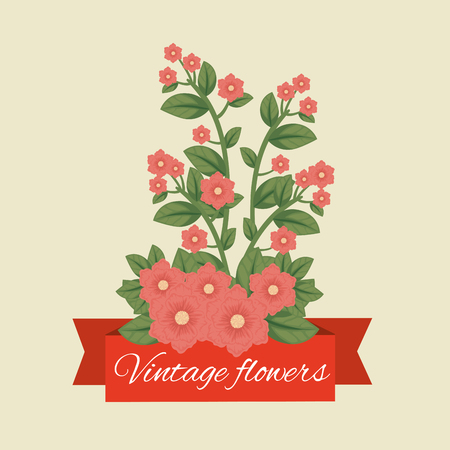 tropical flowers plants with leaves and ribbon vector illustration