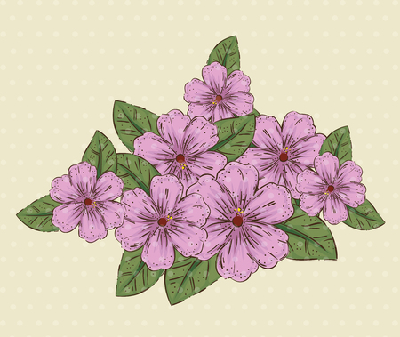 natural flowers plants with leaves and petals vector illustration