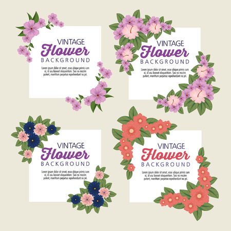 set tropical flowers with petals and leaves vector illustration Çizim