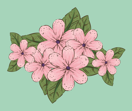 flowers plants with leaves and nature petals vector illustration Illusztráció
