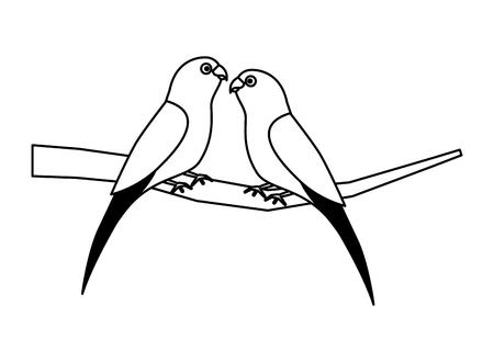 pájaro de dos loros en la ilustración de vector de rama Ilustración de vector