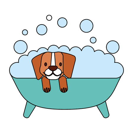 dog in bath grooming pet vector illustration