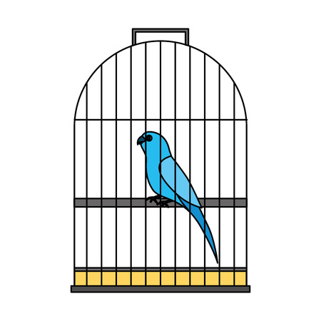 pet shop bird on cage vector illustration