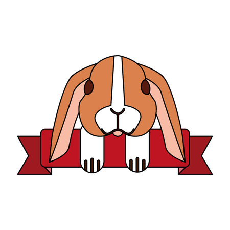 rabbit pet shop ribbon emblem vector illustration