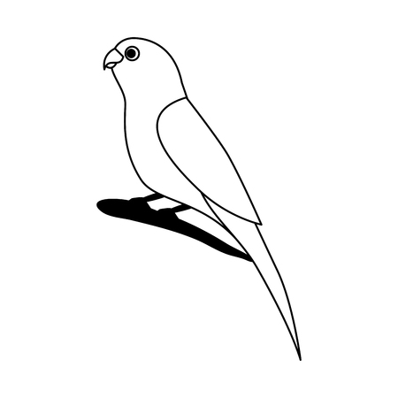 little canary bird on branch vector illustration