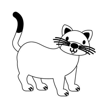cat pet on white background vector illustration