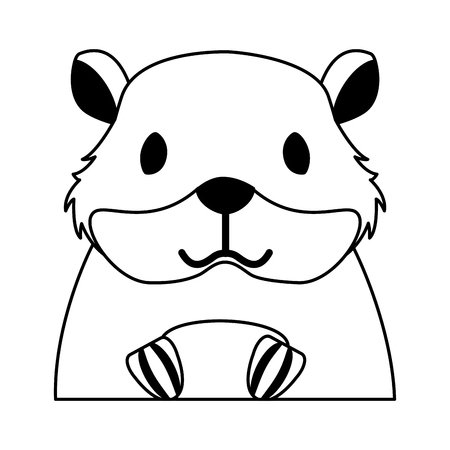 hamster rodent on white background vector illustration